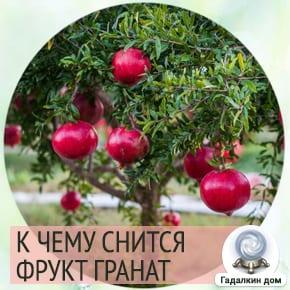 к чему снятся гранаты фрукты