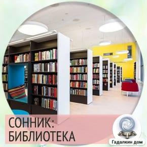 сон библиотека