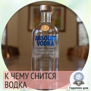 сонник: водка