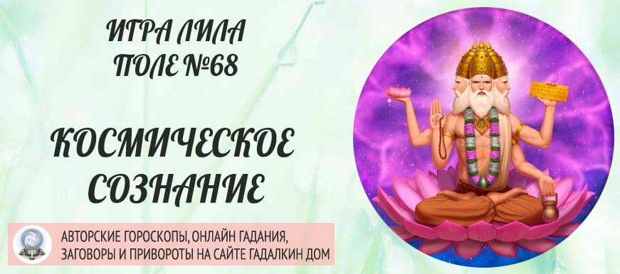 Космическое Сознание - поле 68 игры Лила