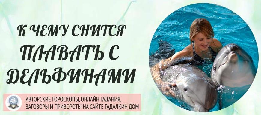 К чему снится плавать с дельфинами