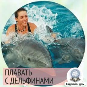 сон плавать с дельфинами