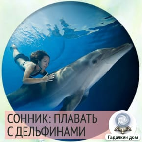Сонник: плавать с дельфинами