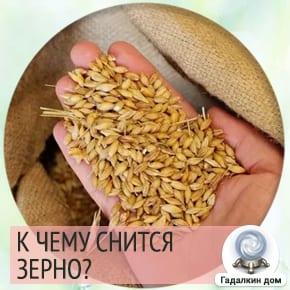 Во сне видеть зерно для девушки thumbnail