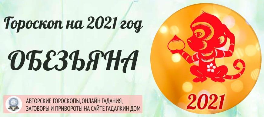 Гороскоп на 2021 год Обезьяна