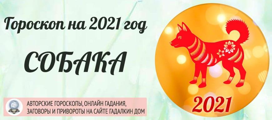 Гороскоп на 2021 год Собака