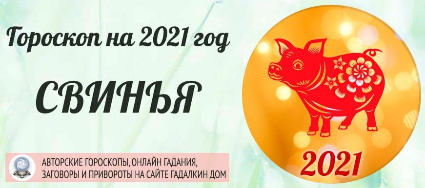 Гороскоп на 2021 год Кабан (Свинья)
