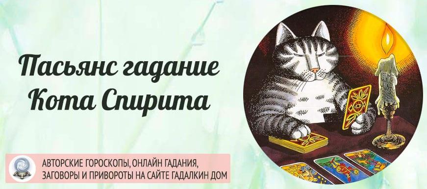 Пасьянс гадание кота Спирита