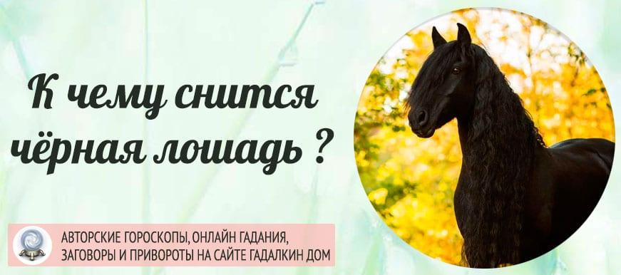 К чему снится чёрная лошадь
