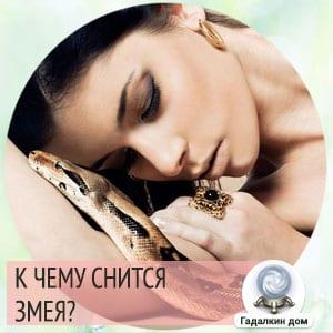 К чему снятся змеи женщине?