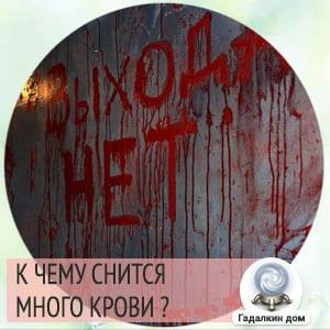 к чему снится много крови своей