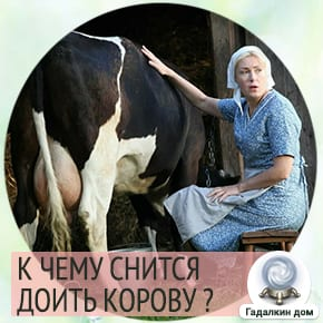сонник доить корову и видеть молоко