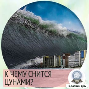 к чему снится цунами волна