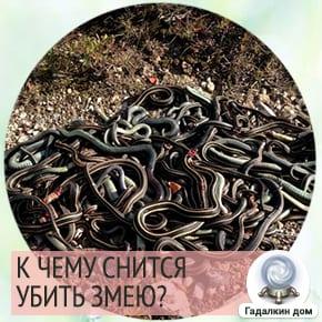 к чему снится убивать змей