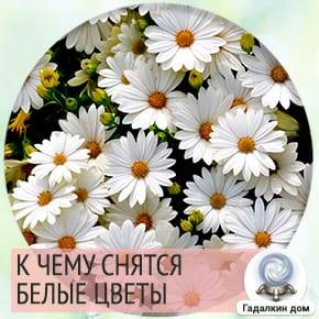 к чему снятся белые цветы в букете