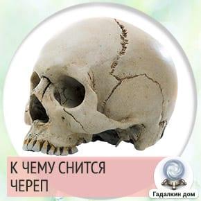к чему снится череп человека