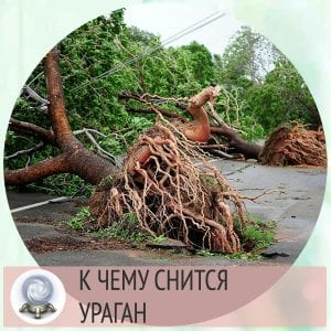 приснился ураган