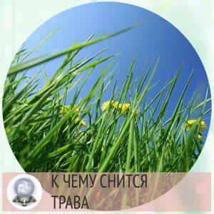к чему снится трава зеленая