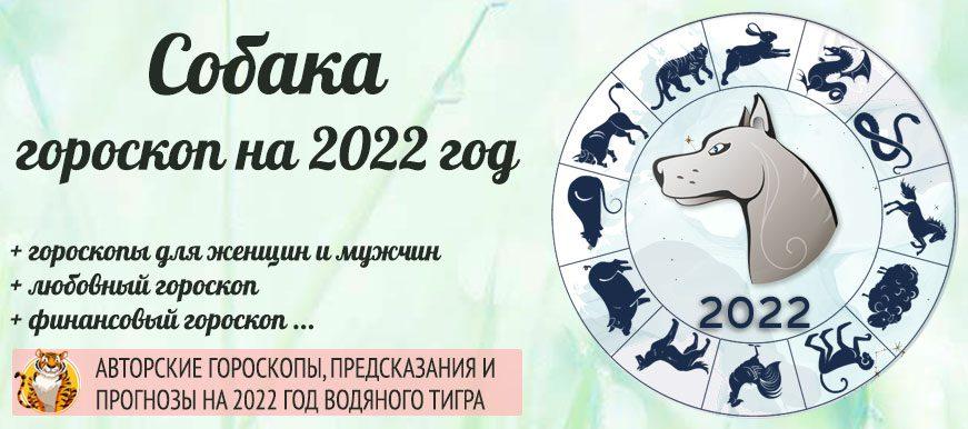 гороскоп собак 2022 год
