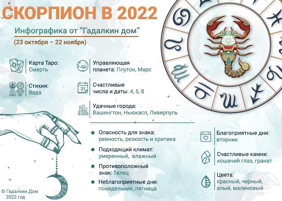 инфографика скорпион 2022