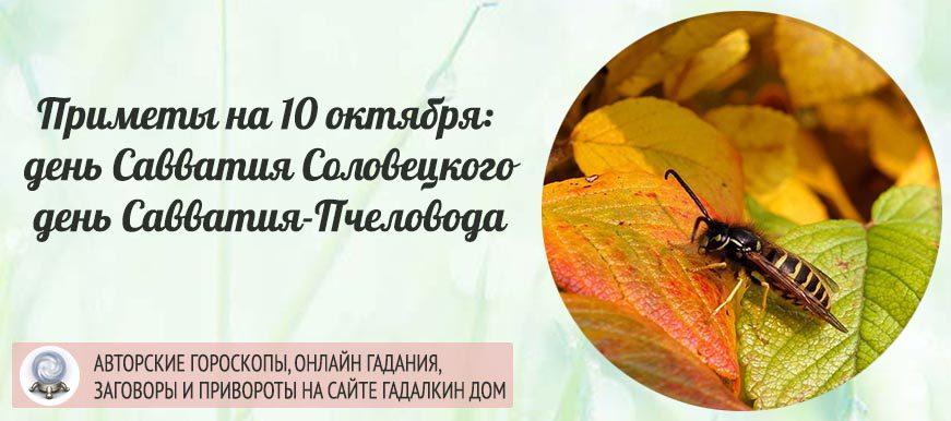 Народные приметы на 10 октября